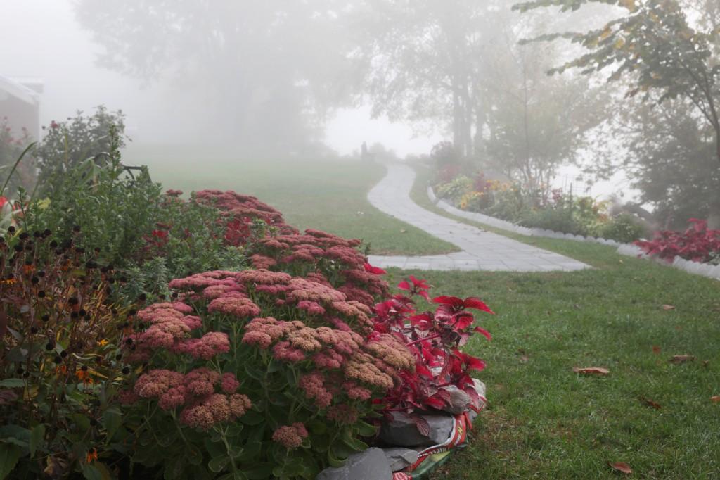 Memorial garden in fog